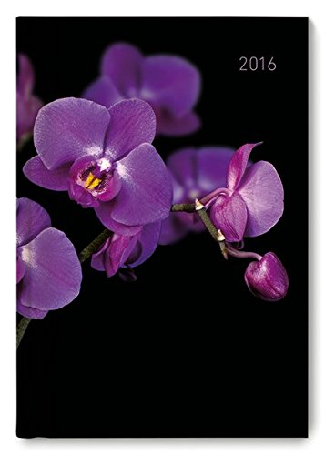 Buchkalender Orchid 2016 - Bürokalender A5 / Cheftimer A5 - 1 Tag 1 Seite - 352 Seiten