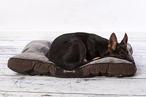 Scruffs 1162 Chester Hunde Kissen, L, grau - 4