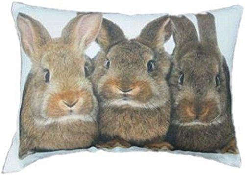 Mars & More - Kissen, Kissenhülle, Zierkissen - Drei Kaninchen - 100 % Baumwolle - 50 x 35 cm - inkl. Füllung
