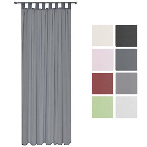 Preisvergleich Produktbild Beautissu Transparenter Schlaufen-Vorhang Amelie - 140x245cm Anthrazit (Grau) - Voile Dekoschal Gardine Schlaufenschal