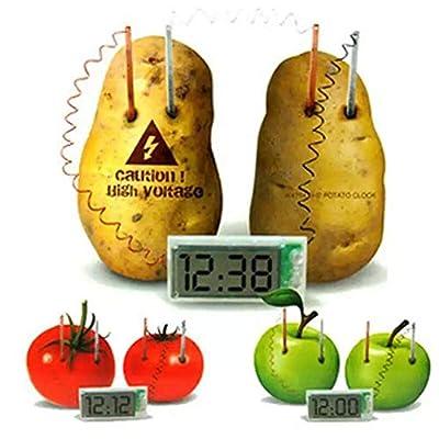 Mallalah Jeu Educatif Scientifique Créatif Pomme de Terre Green Science Patate Horloge Protection l'environnement DIY Technologie Physique Expérience Equipement
