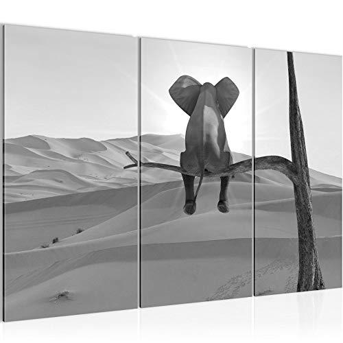 Runa Art Bilder Afrika Elefant Wandbild 120 x 80 cm - 3 Teilig Vlies - Leinwand Bild XXL Format Wandbilder Wohnzimmer Wohnung Deko Kunstdrucke Grau - Made IN Germany - Fertig zum Aufhängen 002031c -