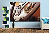 Premium Foto-Tapete Liebevoller Katzenblick (verschiedene Größen) (Size M | 279 x 186 cm) Design-Tapete, Vlies-Tapete, Wand-Tapete, Wand-Dekoration, Photo-Tapete, Markenqualität von ERFURT