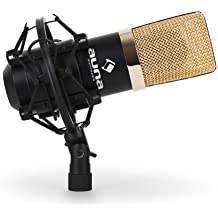 auna MIC-900BG microfono a condensatore (capsula elettrete di 16mm, cavo USB, staffa ragno inclusa, compatibile (Condensatore Strumento Mic)