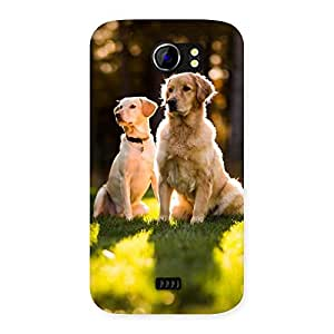 Delighted Do Kutte Back Case Cover for Micromax Canvas 2 A110