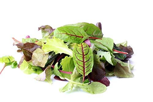 Baby Leaf - Mélange de fantaisie
