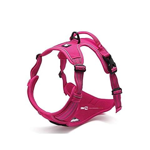 Avant Gamme Design New 2016True Love Harnais pour chien, Your. anti-étranglements 3m couture réfléchissante pour une meilleure visibilité la nuit - M -