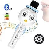 SEHNGY Macchina per Karaoke Portatile con Altoparlante, Microfono Wireless per Bambini, per Regali di Giocattoli, casa, Musica per Feste all'aperto Che Suona e Canta,Blue