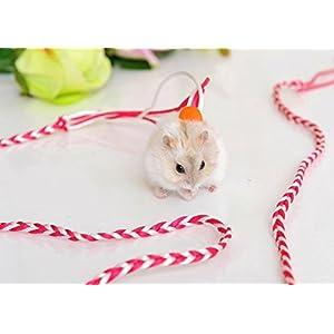 himolla Hamster Gerbil Rat Maus Chinchillas Guinea Pig Eichhörnchen Pet Playhouse Geschirr mit Leinen Einstellbare Hand Made