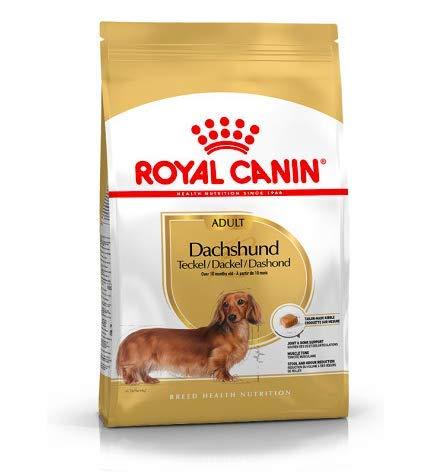 Maltbys' Stores 1904 Limited 7.5kg Royal Canin DACHSHUND ADULT Breed Health Nutrition Dog food
