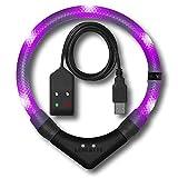 LEUCHTIE® Leuchthalsband Premium Easy Charge Lavendel im weißen Gewebeschlauch Größe 45 I LED Halsband für Hunde I USB aufladbar I konstante Leuchtkraft I wasserdicht I extrem hell