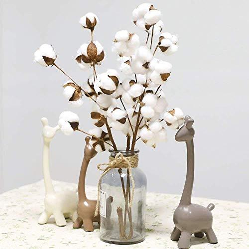HUHU833 21 Zoll Natürlich Getrocknete Blumen getrocknete Baumwolle Stämme Bauernhaus Stil Füller Blumendekor für Dekoration Wohnaccessoires & Deko (3 Pcs)