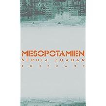 Mesopotamien (suhrkamp taschenbuch, Band 4778)