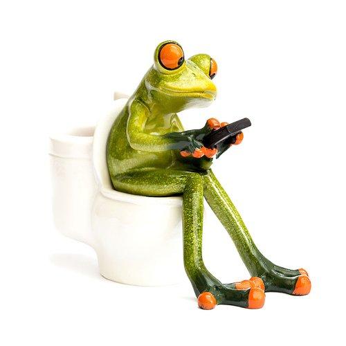 Deko Frosch auf Toilette, Dekofigur Frosch, hellgrün, Höhe ca. 11cm