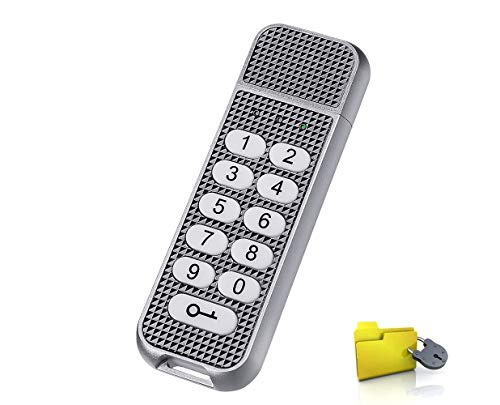 USB Stick verschlüsselt, Lepin verschlüsselte Flash-Laufwerk 32 GB 256-Bit-AES-XTS-Hardware verschlüsselt die erweiterte (Silber) - Laufwerk Hardware-verschlüsseltes