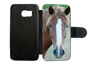 pferden elektronik foto