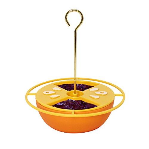 Heath Outdoor Products CF-131 Oriole Futterstation für Zitrus-Buffet