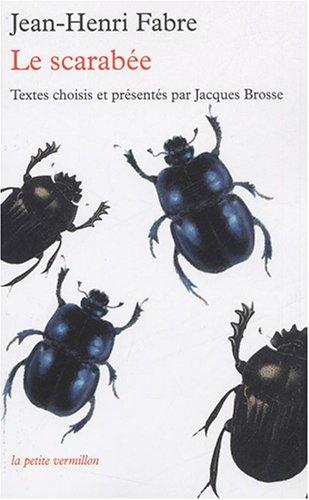 Le scarabe