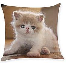 DIPOLA Cute Animal Pillow Cover Throw Pillow Case Sofa Cushion Cover Tela Super Suave Hogar Decor