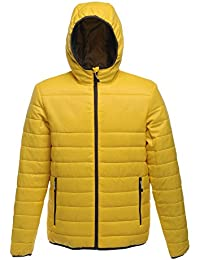 Regatta Women's Arcadia Warmloft Down Touch Jacket