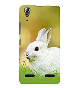RABBIT A BEAUTIFUL CREATION OF NATURE 3D Hard Polycarbonate Designer Back Case Cover for Lenovo A6000 Plus