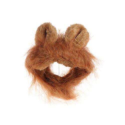 Qiuxiaoaa Haustier Katze Perücke Kopfbedeckung Haustier Kostüm Cosplay Katze Lions Mähne Perücke Nette Hundekappe Hut Weihnachten Kleid mit Ohren Gold (Kleider Weihnachten Gold)