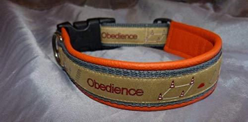 OBI Obedience grün
