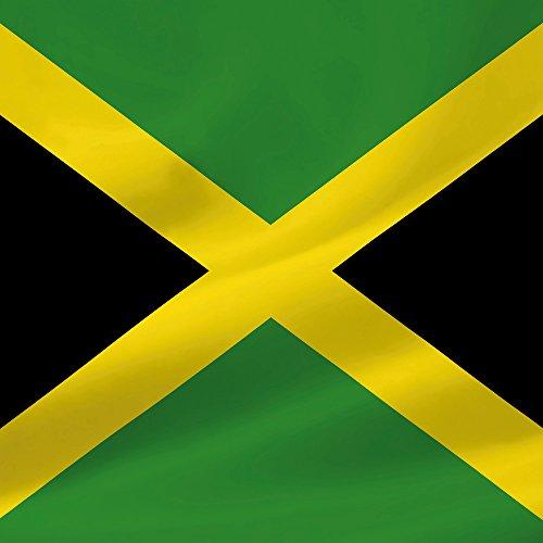 Apple iPhone 4 Housse Étui Silicone Coque Protection Jamaïque Jamaïque Drapeau Sideflip Sac