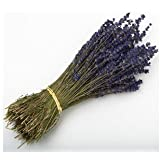 LAVENDER BUNCH 250 STEMS DRIED FLOWERS 30CM WEDDING FAVOURS OR DECORATIONS by Kellys Wedding World