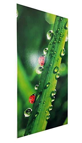 Infrarotheizung Bildheizung PREMIUM rahmenlos mit Bild 900 Watt 120x60x15 cm Motiv Bild 6*