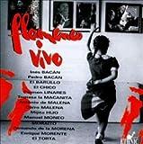 Spanien/Flamenco Vivo -