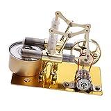 Fenteer 2-Zylinder Stirlingmotor Heißluftmotor Dampfmaschinen Generator Modell Spielzeug Sammlung