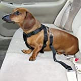 Dog Seat Belt Lead Restraint Harness Black - Fits Any Vehicle and Any Dog - Connects Collar or Harness to any Car Seat Lock