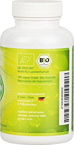 BIO Green Body – 180 Kapseln – hochdosierte Wirkstoffe aus kontrolliert biologischem Anbau – Guarana Extrakt + Grüntee Extrakt + Cayenne-Pfeffer + Schwarzer Pfeffer + Vitamin C aus Acerola