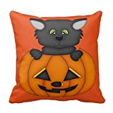 Kaixin J Cute Black Cat in A Pumpkin 18