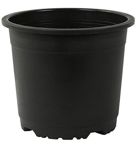 Cappl 9 Inch Round Pot (Pack Of 12) Black