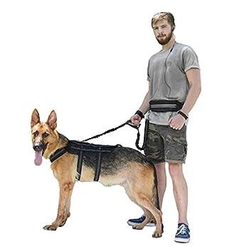 1t Onetigris Jogging Hundeleine Mit Hüftbeutel2handgriffenbungee-leine Reflektierende Nähte ,115 Cm-175 Cm (Schwarz) 6
