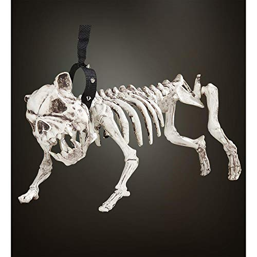 WIDMANN Perro Esqueleto con Correa Halloween