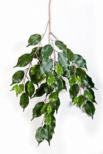 artplants Künstlicher Ficus Exotica Zweig Sunil, 55 grüne Blätter, 75 cm – Deko Zweig/Kunstpflanze