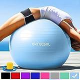 arteesol Gymnastikball 45cm / 55cm / 65cm / 75 cm inkl. Pumpe Anti-Burst Sitzball für Yoga Pilates Fitness Physiotherapie (5 Farben) (Aqua, 65cm)