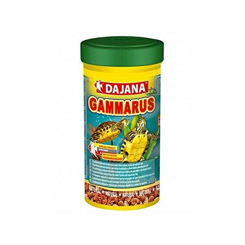 Dajana – Gammarus crevettes séchées pour tortues aquatiques, poissons d'aquarium et animaux de terrarium 100 ml