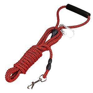 Laisse de Dressage de Chiens, Corde de Traction pour Animaux de Compagnie, laisses durables Plus Solides en Nylon, entraînement de Course