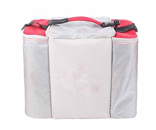 Outdoor Pacchetto Di Isolamento Sacchetto Più Freddo Portatile Sacchetto Del Pranzo Refrigerato,Black Red
