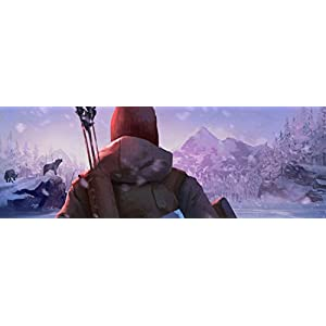 The Long Dark – [PlayStation 4]