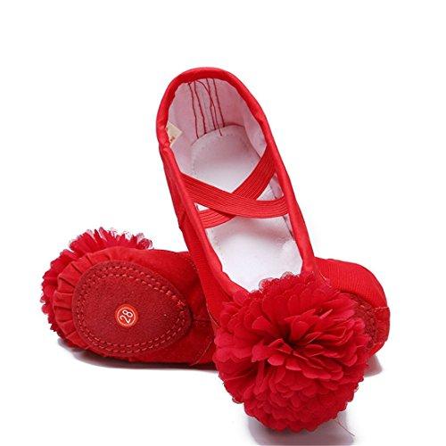 Wxmddn Scarpe da ballo Soft Bottom pratica scarpe Cat Claw scarpe Soft suole danza scarpe rosso A