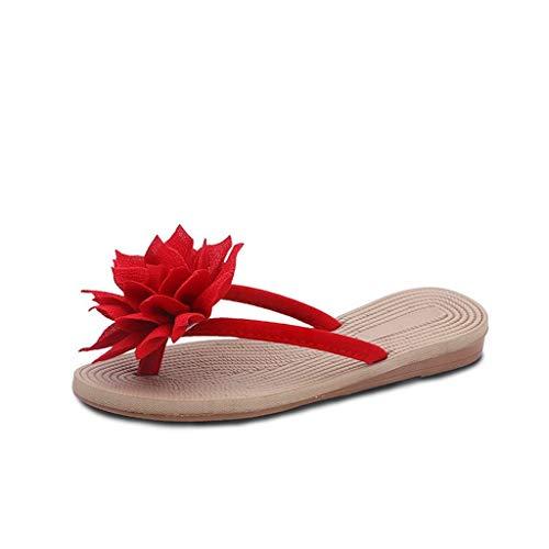 cheap for discount e3d00 fca5a Women Sandals,BaZhaHei Women s Summer Shoes Peep-Toe Low Shoes Roman  Sandals Ladies Flip