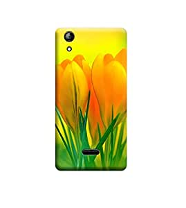 EPICCASE Premium Printed Back Case Cover With Full protection For Micromax Canvas Selfie 2 Q340 (Designer Case)