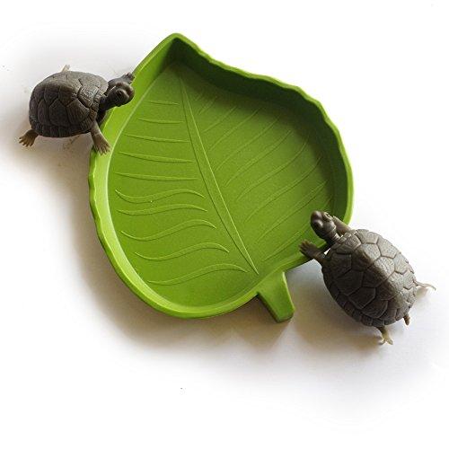 Green Leaf Form Reptile Fressnapf Schildkröte Wasser Dish Futternapf Amphibien (2 Stück/Pack)