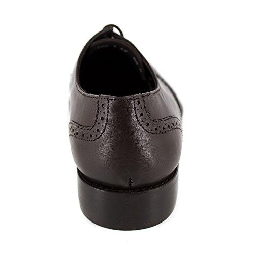 PIERRE CARDIN Chaussures Derby PC1605GC Marron Marron