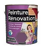 Peinture 0,5 Litre CASSIS Spécial rénovation carrelage cuisine radiateur electromenage